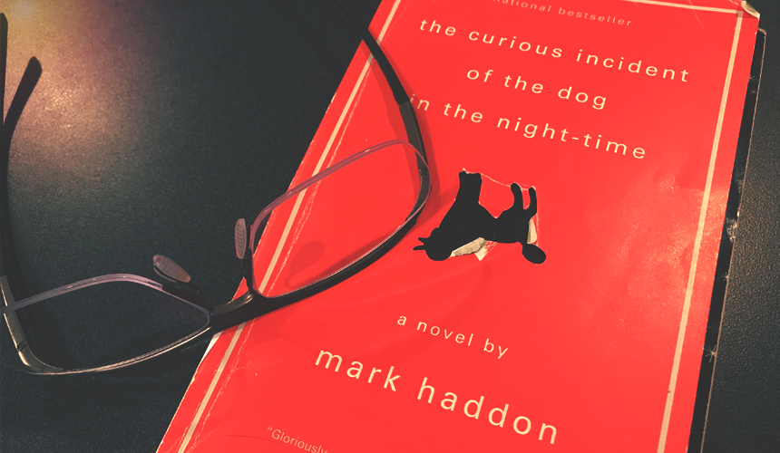 Book Review: The Curious Incident of the Dog in the Night-Time